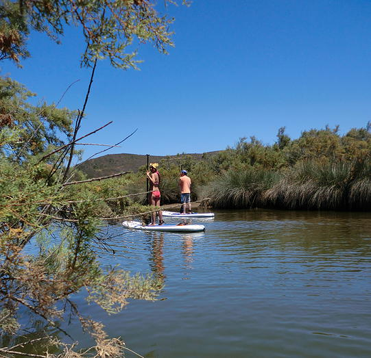 stand-up paddle boarding family trips Algarve